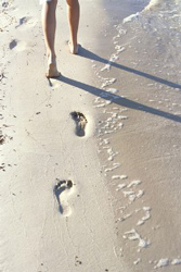 Environmental - Footprints-In-The-Sand