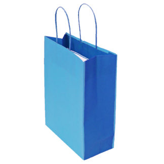 Blue and Dark Blue Bicolour Twisted Paper Handle Carrier Bags