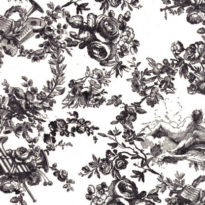 Classic Toile Wrapture Printed Tissue