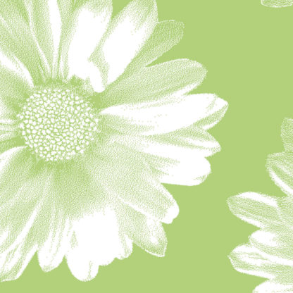 Green Daisy Wrapture Printed Tissue