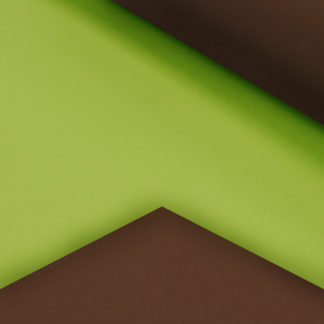 Lime Green and Chocolate Double Sided Gift Wrap