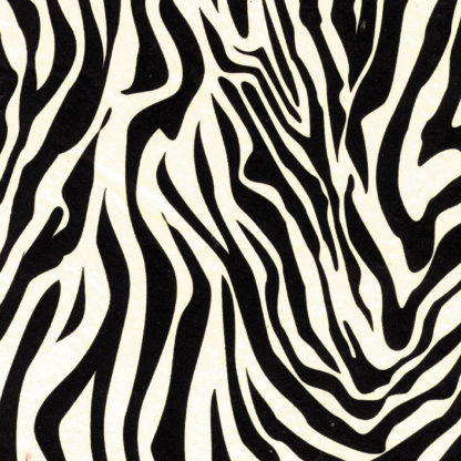 Zebra Wrapture Printed Tissue