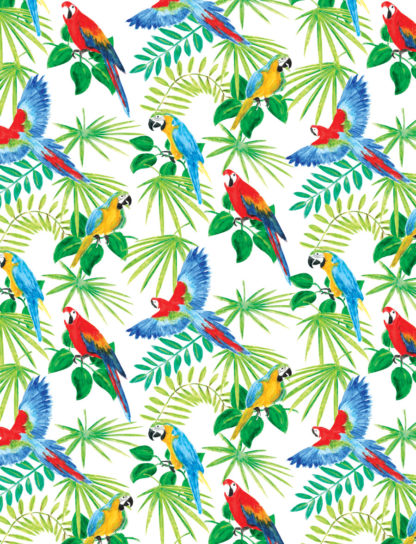 colourful birds wrapture printed tissue